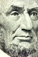 Tunable Diode Laser Chip - Only a Speck on a Five Dollar Bill