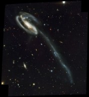 Arp 188 and the Tadpole's Tidal Tail