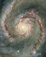 M51: The Whirlpool Galaxy in Dust and Stars