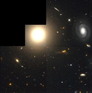 Galaxy NGC 4881 and the Coma Cluster