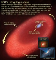 Hubble Finds Mysterious Disk of Blue Stars Around Black Hole