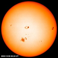 MDI Sunspot size winner -- Active region 10486 became the largest sunspot seen by SOHO, It unleashed a spectacular show on 28 October 2003. An X 17.2 flare, the second largest flare observed by SOHO and the third largest ever recorded, blasted off a strong high energy proton event and a fast-moving Coronal Mass Ejection. The spot occupied an area equal to about 15 Earths, a size not seen since 1989. It later fired off the largest X-ray flare recorded, on 4 November 2003.