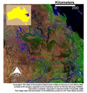 Austral Winter and Spring in Queensland's Brigalow Belt
