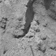 The Trench Throws a Dirt Clod at Scientists