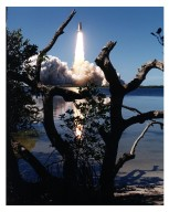 Like a rising sun lighting up the afternoon sky, the Space Shuttle Columbia soars from Launch Pad 39A at 2:20:32 p.m. EST, April 4, on the 16-day Microgravity Science Laboratory-1 (MSL-1) mission. The crew members are Mission Commander James D. Halsell, Jr.; Pilot Susan L. Still; Payload Commander Janice Voss; Mission Specialists Michael L. Gernhardt and Donald A. Thomas; and Payload Specialists Roger K. Crouch and Gregory T. Linteris. During the scheduled 16-day STS-83 mission, the MSL-1 will be used to test some of the hardware, facilities and procedures that are planned for use on the International Space Station as well as research in combustion, protein crystal growth and materials processing experiments