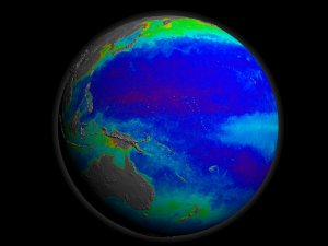 SeaWiFS Biosphere from 1997 to 2006