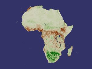 Africa NDVI 2000 March Anomaly