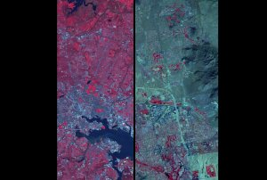 AGU Press Briefing May 29th: Comparing the Urban Ecology of Two Cities.
