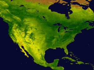NDVI Animation over Continental United States