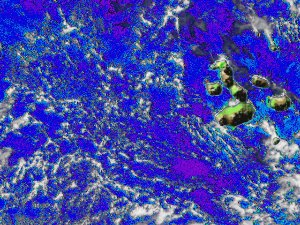 SeaWIFS Phytoplankton around the Galapagos Islands in May 1998