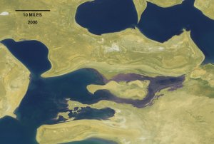 Dramatic Evaporation of the Aral Sea (with dates)