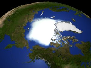 Arctic Mean Monthly Sea Ice Concentration