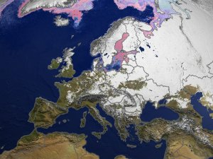 Daily Snow and Sea Ice Temperature over Europe