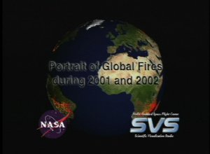 A Portrait of Global Fires during 2001 and 2002