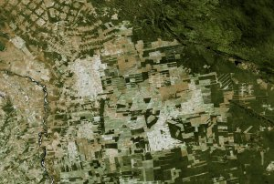 Bolivian Deforestation from 1984 to 2000