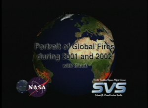 A Portrait of Global Fires during 2001 and 2002 with Clock