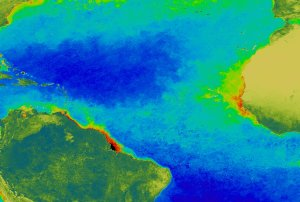 SeaWiFS: The Effect of the Amazon on the Atlantic