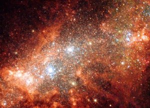NGC 1569: Starburst in a Small Galaxy