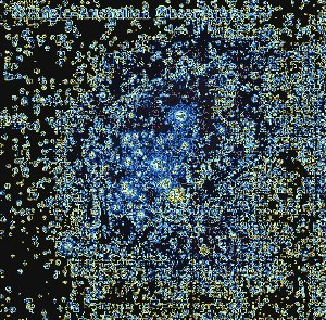 NGC 3293: A Bright Young Open Cluster