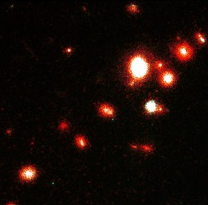 Hubble Space Telscope Deep-sky Survey Finds Interacting Galaxies in a Cluster