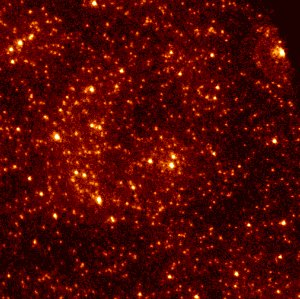 Hubble Uncovers Faint Stars in the Core of Globular Cluster
