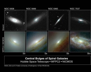 Starry Bulges Yield Secrets to Galaxy Growth