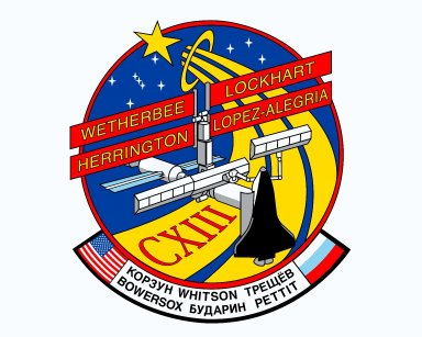 STS-113 insignia
