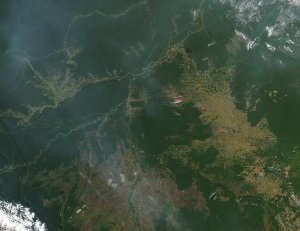 Fires in Brazil and Bolivia
