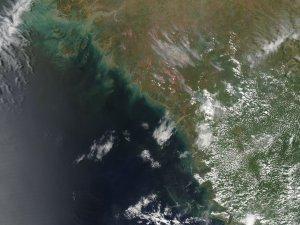 Fires in Guinea