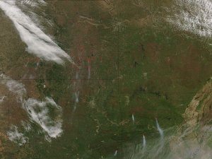Fires in the Southern Midwest