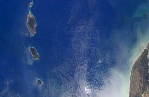 The East Pacific Rise from Near and Far