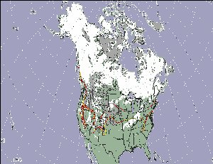 MODIS Image Shows Below-Average Snow Cover in North America