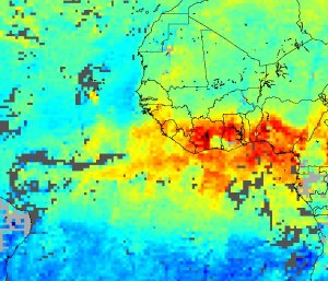 Widely Scattered Fires across North Africa