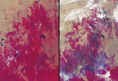 Drought and Burn Scars in Southeastern Australia