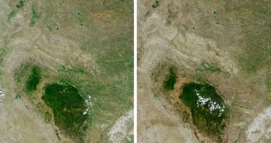 Drought in the Black Hills