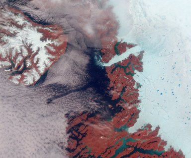 Greenland's Coast in Holiday Colors