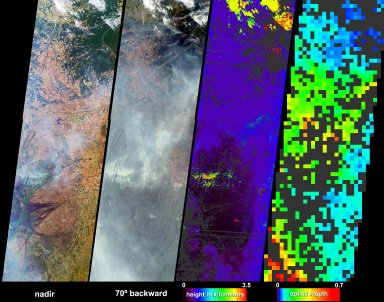 Fire and Deforestation near the Xingu River