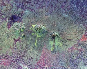 Space Radar Image of Central Java, Indonesia