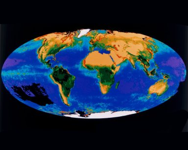 First Composite Image of the Global Biosphere