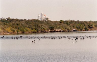 KENNEDY SPACE CENTER, FLA. -- Birds by the score, especially gray and white pelicans, cormorants, sea gulls, herons and ospreys, flock to the turn basin east of the Vehicle Assembly Building in a feeding frenzy as schools of fish fill the waters. In the background is Launch Pad A with Space Shuttle Endeavour waiting for launch on Friday, Feb. 11 for mission STS-99. The basin is part of the Indian River Lagoon, which is made up of Mosquito Lagoon to the north, Banana River and Creek to the south and the Indian River to the west. It is called a lagoon because it is a body of water separated from the ocean by barrier islands, with limited exchange with the ocean through inlets. The Indian River Lagoon has one of the most diverse bird populations anywhere in America. Also, nearly one-third of the nation's manatee population lives here or migrates through the lagoon seasonally. The lagoon varies in width from ½ mile to 5 miles and averages only 3 feet in depth