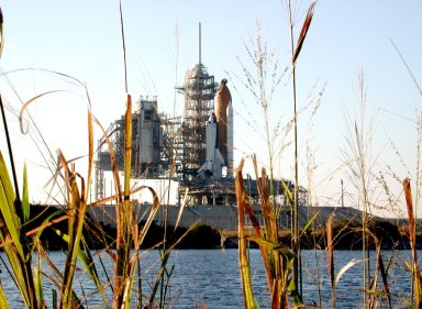 KENNEDY SPACE CENTER, FLA. -- A view of Space Shuttle Columbia through reedy grasses in nearby water. Columbia is revealed after rollback of the Rotating Service Structure on Launch Pad 39A. Columbia is scheduled for launch Jan. 16 at 10:39 a.m. EST on mission STS-107, a research mission.