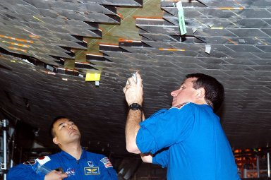 KENNEDY SPACE CENTER, FLA. - In the Orbiter Processing Facility, STS-114 Mission Specialists Soichi Noguchi and Stephen Robinson take a close look at the some of the tiles underneath Atlantis. Noguchi is with the Japan Aerospace Exploration Agency, JAXA. The STS-114 crew is at KSC to take part in crew equipment and orbiter familiarization.