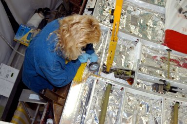 KENNEDY SPACE CENTER, FLA. - A worker in the Orbiter Processing Facility checks part of the payload bay on Discovery. The orbiter recently underwent an Orbiter Major Modification period, which included inspection, modifications and reservicing of most systems onboard. The work on Discovery also included the installation of a Multifunction Electronic Display Subsystem (MEDS) - a state-of-the-art ?glass cockpit.? The orbiter is now being prepared for eventual launch on a future mission.