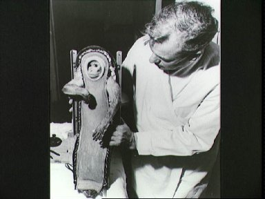 The Rhesus monkey, Sam, after his ride in the LJ-2 spacecraft
