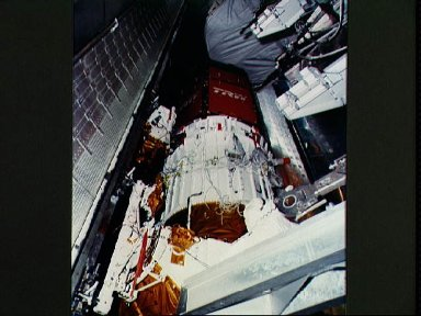 STS-26 tracking and data relay satellite C (TDRS-C) loaded in payload bay