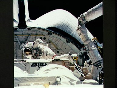 STS-57 MS and PLC Low, in EMU and atop the RMS, is maneuvered in OV-105's PLB