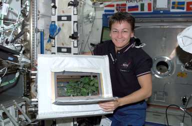 Astronaut Whitson Displays Soybean Growth Aboard ISS