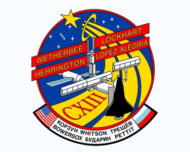 Mission STS-113 Crew Insignia