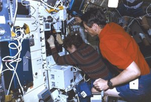 Astronauts Onboard STS-78 Life and Microgravity Spacelab (LMS)