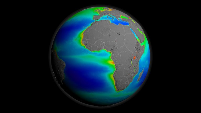 Global Rotation of SeaWiFS Biosphere Decadal Average without Land